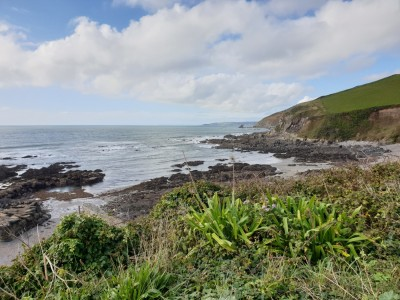 Portwrinkle Beach - dog-friendly, Cornwall - Driving with Dogs