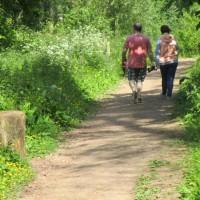 Dog-friendly walk near Tiverton, Devon - Devon dog walking places.JPG