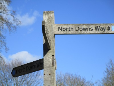 A281 North Downs Way dog walk, Surrey - Driving with Dogs