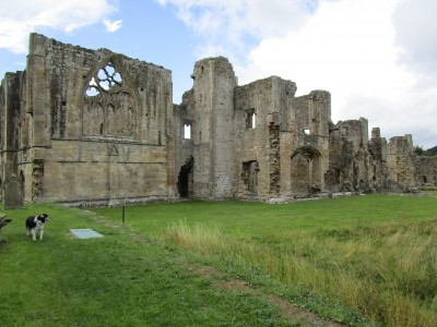 Abbey ruins dog walk near Richmond, Yorkshire - Driving with Dogs