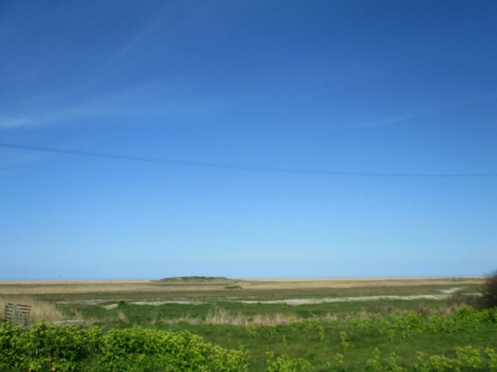 A149 dog-friendly dining pub with awesome views and great food, Norfolk - Norfolk dog-friendly pub with garden
