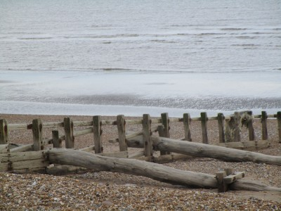 Dog-friendly beach near Eastbourne, East Sussex - Driving with Dogs
