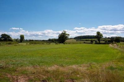 Historic village with a dog-friendly pub and dog walk, Somerset - Driving with Dogs