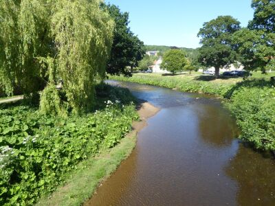 Pretty village with riverside dog walk and country inn, North Yorkshire - Driving with Dogs