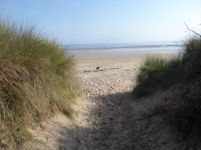 Embleton dog-friendly beach, Northumberland - Driving with Dogs