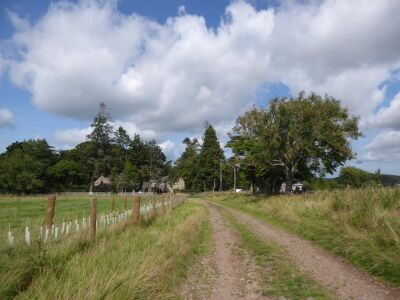 A Cheviot dog walk with dog-friendly cafe, Northumberland - Driving with Dogs