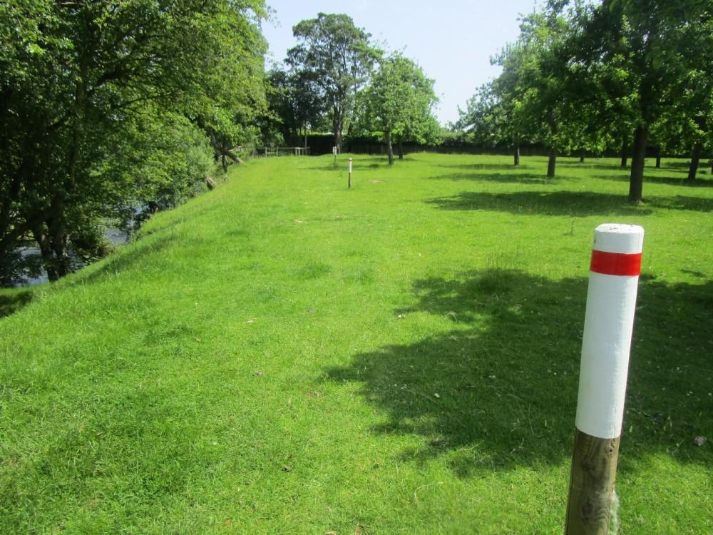A456 riverside dog walk and pub, Herefordshire - dog-friendly pubs and dog walks herefordshire.JPG