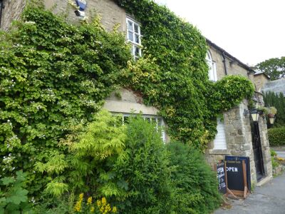 A689 dog-friendly cafe/pub and a short walk, County Durham - Driving with Dogs