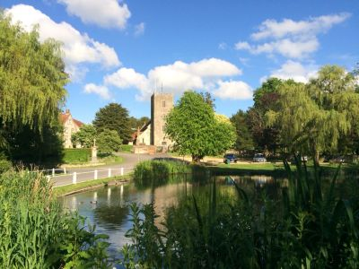 A3 dog walk and dog-friendly pub near Petersfield, Hampshire - Driving with Dogs
