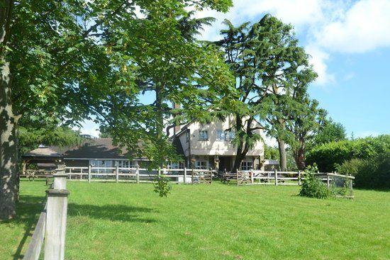 M25 Jct 5 dog-friendly pub with dog walk, Essex - Dog-friendly pub and walk near the M25 Essex.jpg