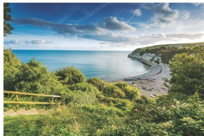 Coast path and a dog-friendly beach, Devon - Driving with Dogs