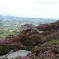 Simonside Hills dog walk, Northumberland - 20130806_141558.jpg