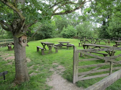 Riverside shops, cafe and dog walk, Devon - Driving with Dogs