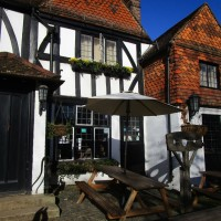 A25 dog walk and dog-friendly pub, Surrey - Surrey dog walks and dog-friendly pubs.JPG
