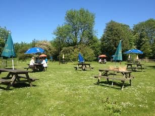 Dog-friendly pub near Otford, Kent - Driving with Dogs