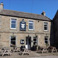 Richmond town with dog-friendly pub and dog walk, North Yorkshire - Dog-friendly pub in Yorkshire