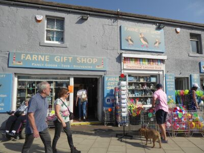 Seahouses tourist town and walks, Northumberland - Driving with Dogs