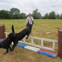 River Meadow Dog Walking Fields, Warwickshire - IMG_8208.JPG