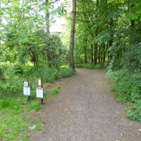 Easy dog walks in the Wolds, Lincolnshire - Dog walks in Lincolnshire