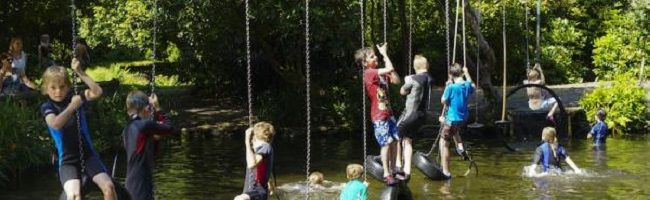 A38 country park for family activities and dog walks, Devon - River-Dart-Country-Park_Photo-Credit-Campsite-Finder-650px.jpg