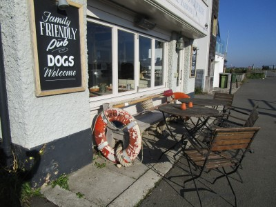 Rye dog-friendly pub and dog walk, East Sussex - Driving with Dogs