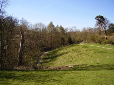 M20 Junction 11 country park dog walk, Kent - Driving with Dogs