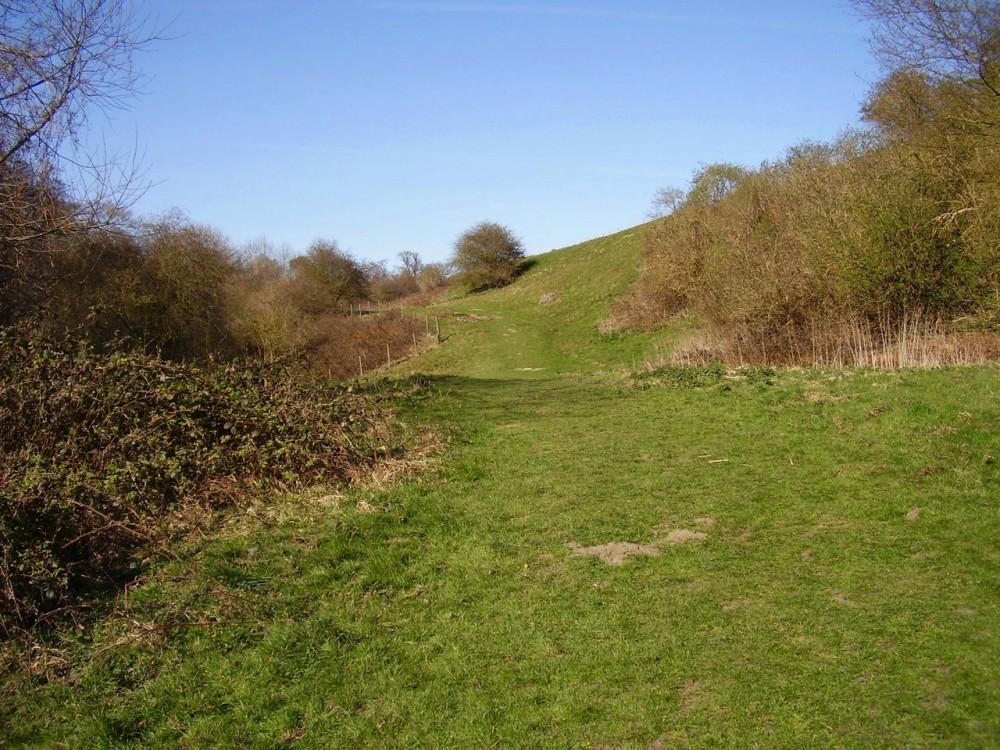 M20 Junction 11 country park dog walk, Kent - Dog walks in Kent
