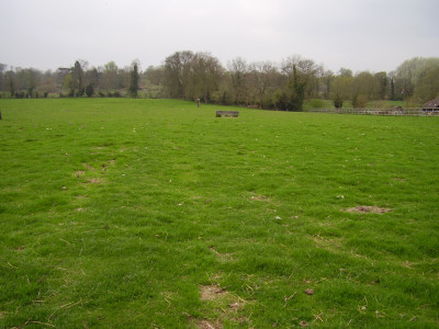M11 Junction 10 dog-friendly pub and dog walk, Cambridgeshire - Driving with Dogs