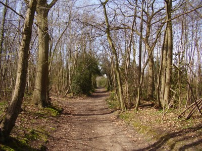 M25 Junction 3 dog walk and dog-friendly pub, Kent - Driving with Dogs