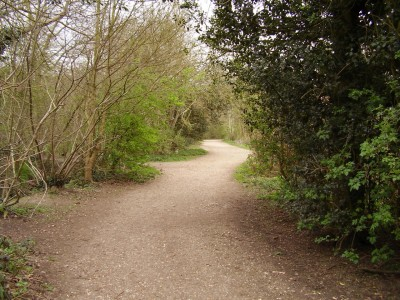 M25 Junction 31 dog walk near South Ockendon, Essex - Driving with Dogs
