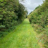 National Herb Centre Walks, Oxfordshire - 45B7D6AE-8D4A-44C4-B5A0-86C42D2703D3.jpeg