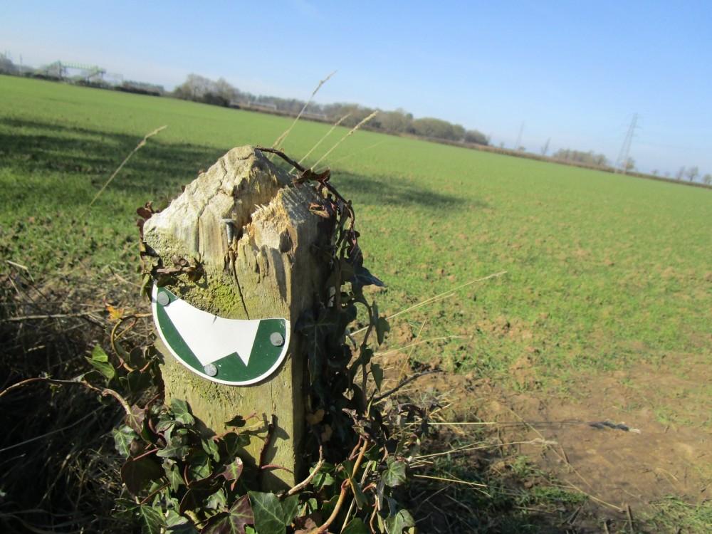 Dog-friendly pub and dog walk near Rugby, Warwickshire - Warwickshire dog walk and dog-friendly pub.JPG