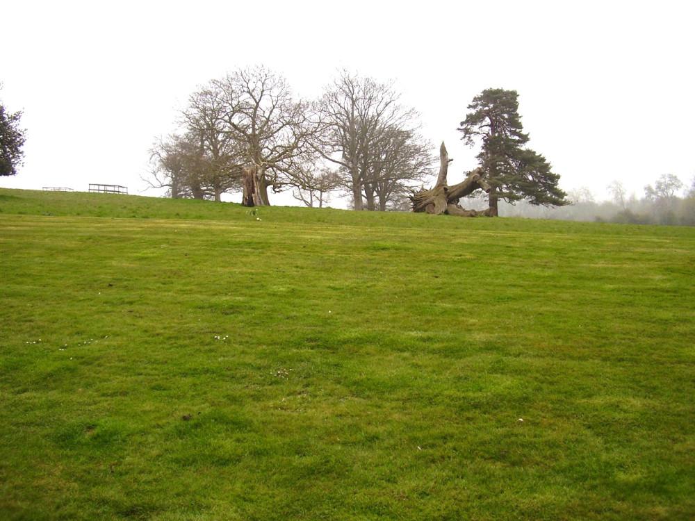 Rycote dog walk and dog-friendly pub, Oxfordshire - Dog walks in Oxfordshire
