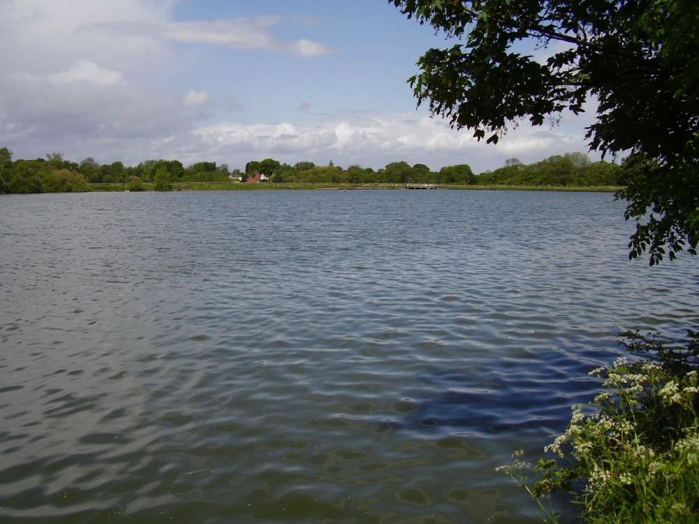 Dog walk around the Lakes with a dog-friendly pub and a cafe, Warwickshire - Dog walks in Warwickshire