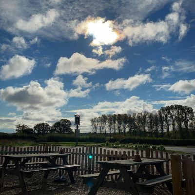 Riverside dog walks and swimming, and a pub, Suffolk - Driving with Dogs