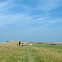 South Downs Way dog walk, East Sussex - Looking_towards_Firle_Beacon_-_geograph.org.uk_-_29384.jpg