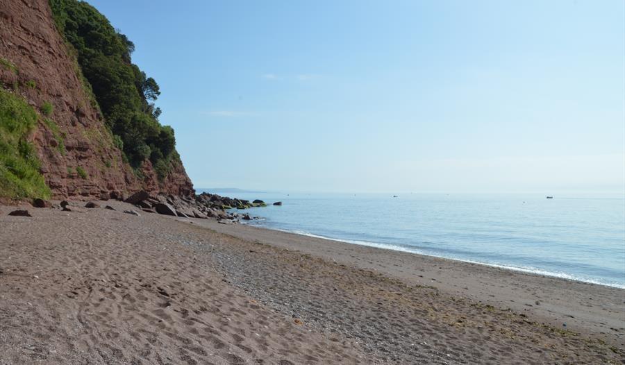 Secret dog-friendly beach and dog walk, Devon - Devon dog-friendly beaches.jpg