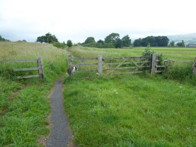 A dog walk in the tracks of the Tees railway, County Durham - Driving with Dogs