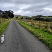 Stretch of the Paws in Dufton, near the A66 at Appleby-in-Westmorland, Cumbria - IMG_20190905_113626.jpg