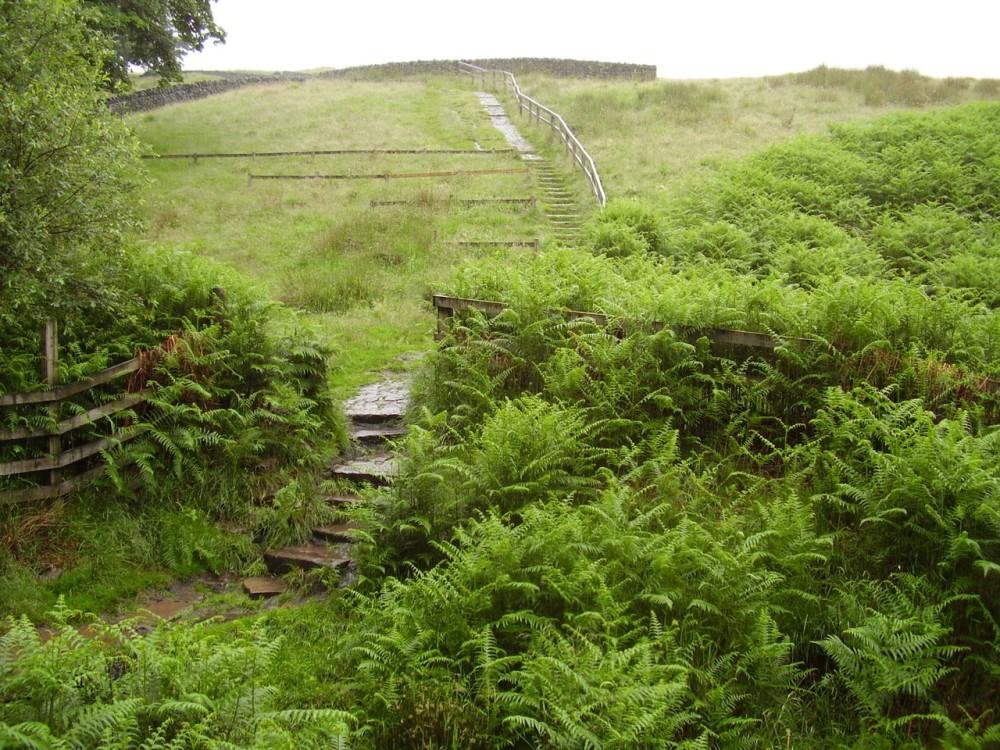 M62 Junction 21 reservoir dog walk and pub, Lancashire - Dog walks in Lancashire