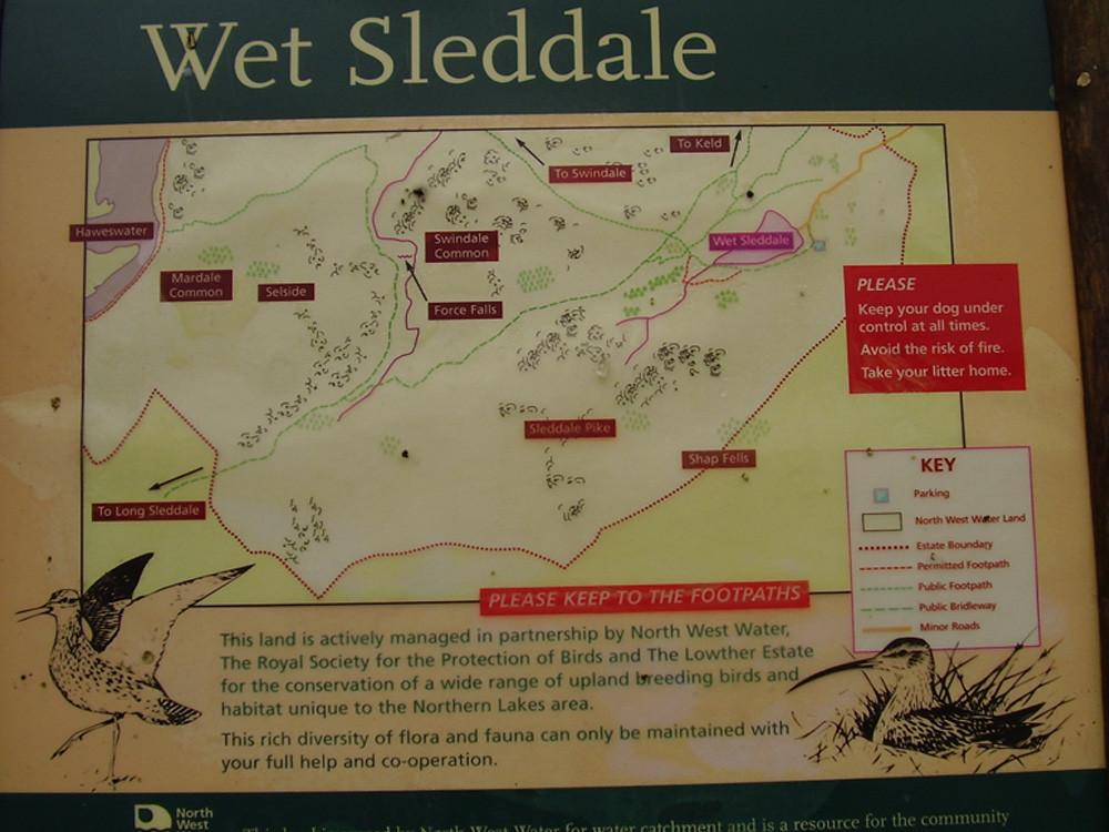 M6 Junction 39 dog walk near Shap, Cumbria - Dog walks in Cumbria