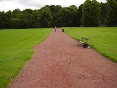 M74 Junction 10 dog walk in Lesmahagow, Scotland - Driving with Dogs