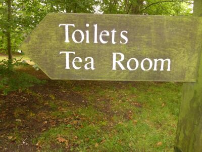 A69 family and dog-friendly country park walks and tea rooms, Cumbria - Driving with Dogs