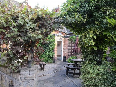A46 dog walk and dog-friendly pub, Leicestershire - Driving with Dogs