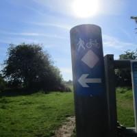 A38 dog walk near Worcester, Worcestershire - Worcestershire dog walks.JPG