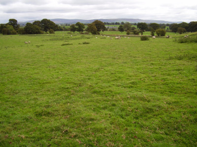 M6 Junction 43 River Eden dog-friendly pub and dog walk, Cumbria - Driving with Dogs