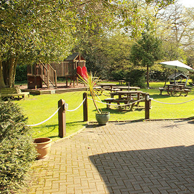 Country pub and dog walk near Chelmsford, Essex - Driving with Dogs