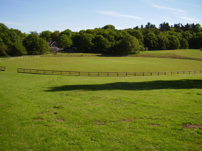 A60 Country Park dog walk, Nottinghamshire - Driving with Dogs
