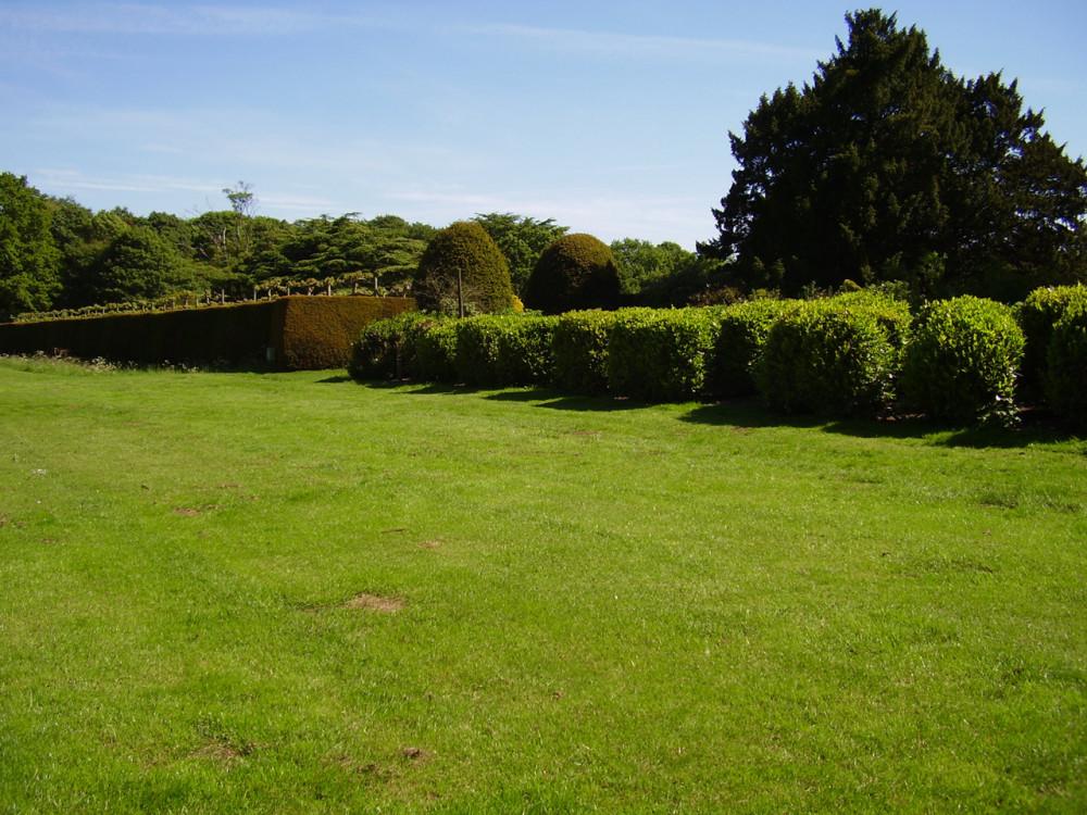 Rufford Country Park dog walk, Nottinghamshire - Dog walks in Nottinghamshire