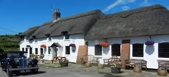 Dog walk and thatched pub on the Downs, Dorset - Driving with Dogs